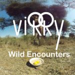 Virry VR: Wild Encounters