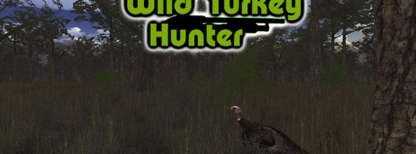Wild Turkey Hunt VR